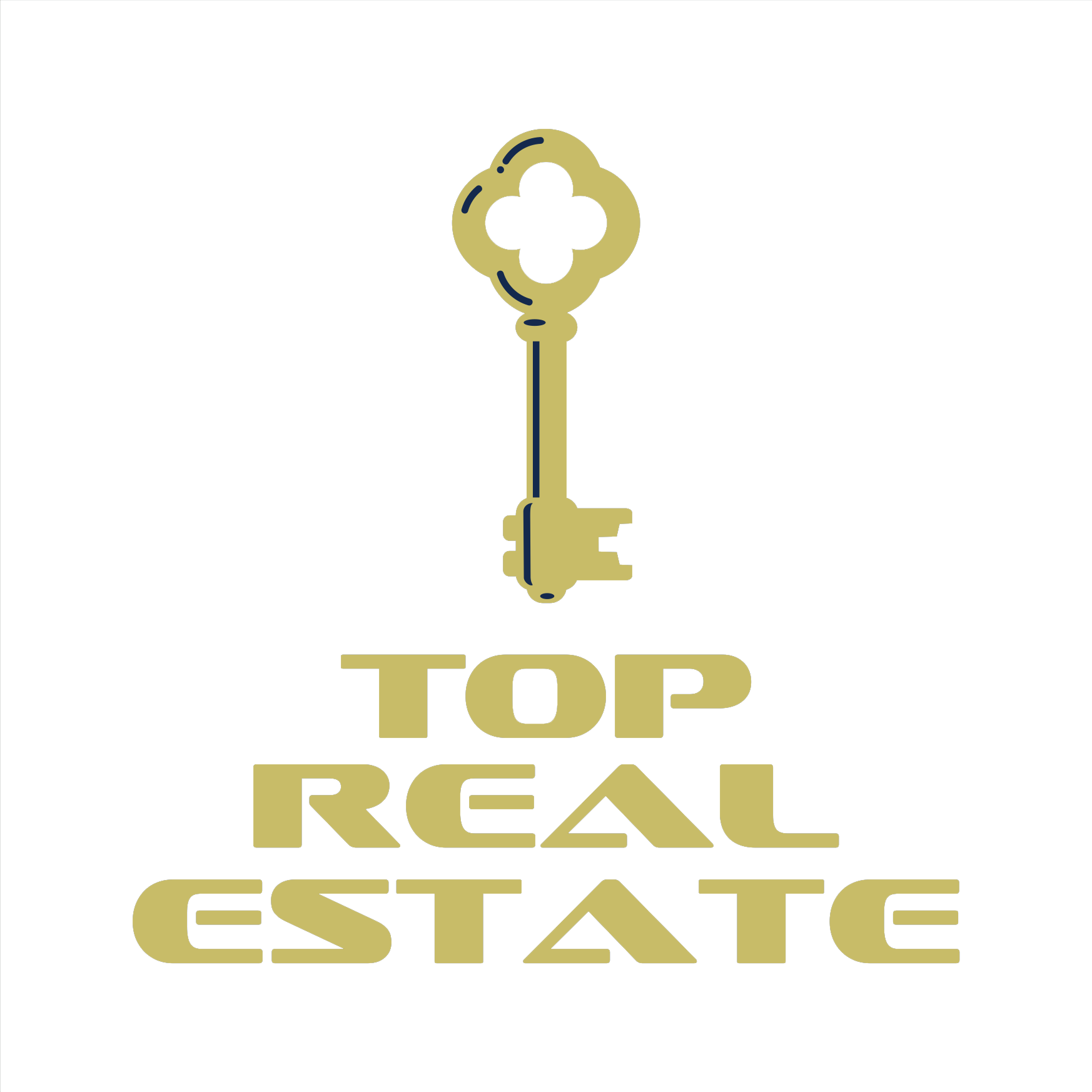 Top Real Estate Logo